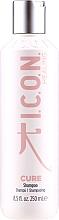 Духи, Парфюмерия, косметика Восстанавливающий шампунь для волос - I.C.O.N. Cure Recovery Shampoo