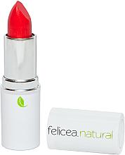 Духи, Парфюмерия, косметика Губная помада - Felicea Natural Lipstick