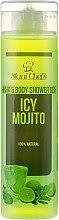 Духи, Парфюмерия, косметика Гель для мытья волос и тела - Hristina Stani Chef'S Body Food Hair & Body Shower Gel Icy Mojito