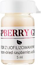 Духи, Парфюмерия, косметика Активатор для лица с лиофилизированной малиной - APIS Professional Raspberry Glow Set