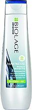 Духи, Парфюмерия, косметика Шампунь для восстановления поврежденных волос - Biolage Keratindose Advanced Pro-Keratin+Silk NEW
