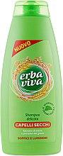 Духи, Парфюмерия, косметика Шампунь для сухих волос с экстрактом овса и протеинами пшеницы - Erba Viva Hair Shampoo