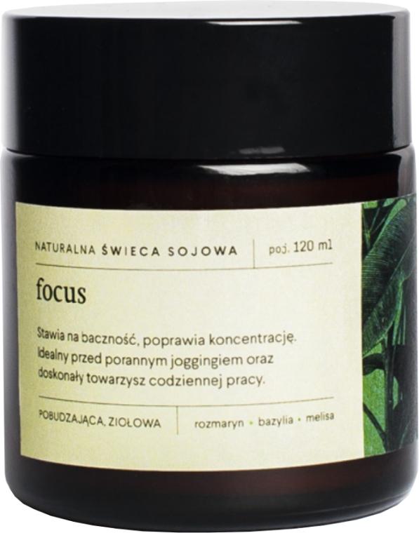 Натуральная соевая свеча с травяным ароматом - Mood Ideas Focus Candle