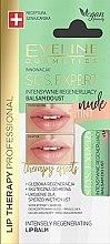 Духи, Парфюмерия, косметика Бальзам для губ - Eveline Cosmetics Sos Expert Nude Tint Lip Balm