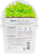 Успокаивающая тканевая маска с экстрактом чайного дерева для проблемной кожи - EssenHerb Tea Tree Mask — фото N2