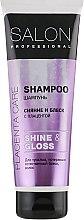 Духи, Парфюмерия, косметика Шампунь для тусклых волос - Salon Professional Shine and Gloss