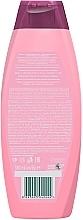 Шампунь-кондиционер сила и блеск с керамидами - Palmolive Hair Shampoo — фото N2