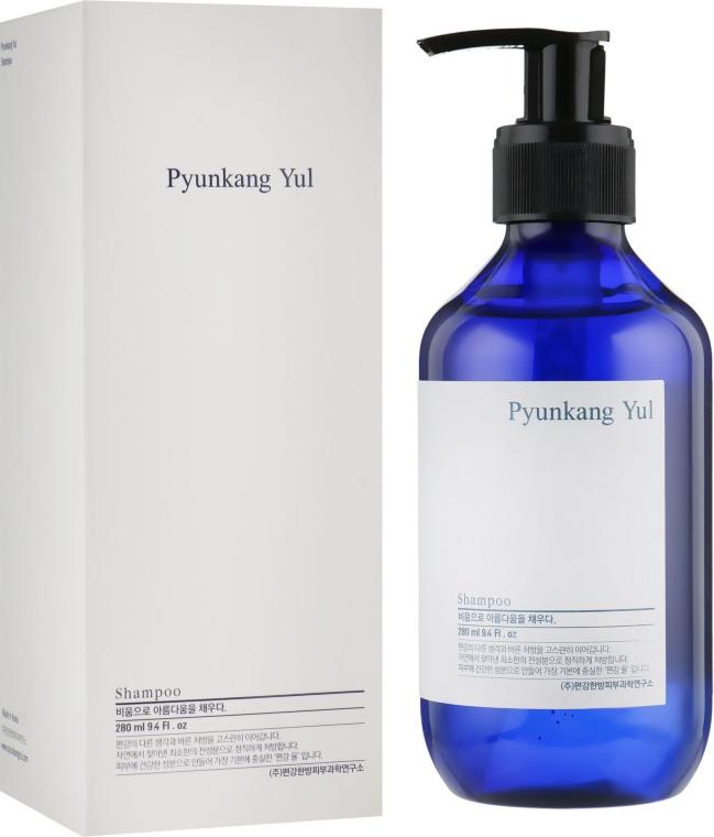 Органический укрепляющий шампунь с экстрактом имбиря - Pyunkang Yul Shampoo